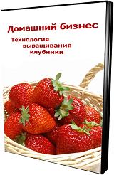 Изображение - Выращивание дыни как бизнес klubnika3